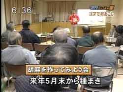 2005-oshino-5.jpg