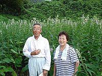 20080907-4.jpg